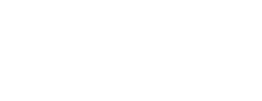 About Us – Gulf Consult